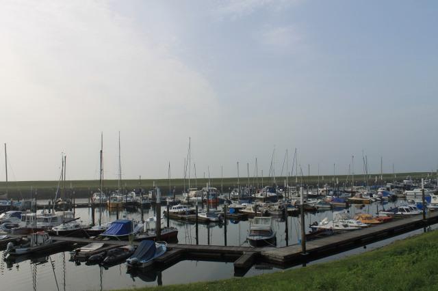Texel's Harbor